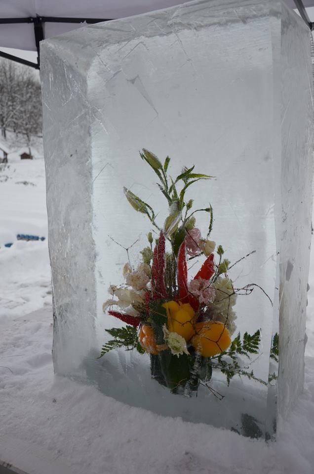квіти у льоді