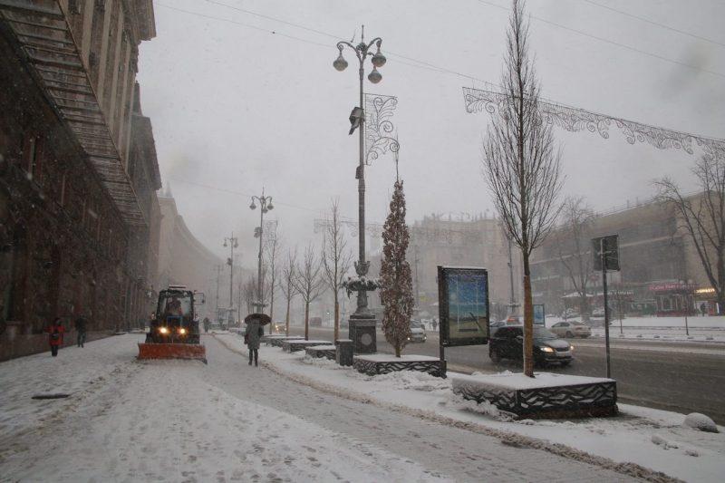 дерева зима