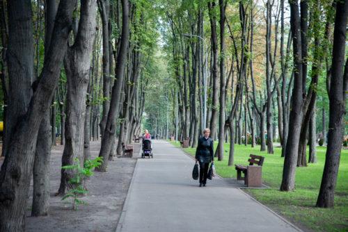 Сирецький парк