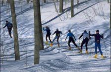 бігові лижі