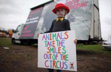 Мітинг за цирк без тварин
