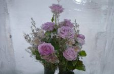 квіти та лід