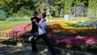танго хризантеми