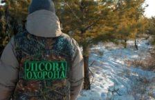 лісова охорона